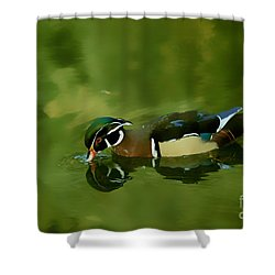 Male Wood Duck Water Reflections Shower Curtain