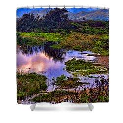Water Scene Beauty 3 Shower Curtain