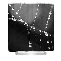 Shower Curtain featuring the photograph Water Web by Darcy Michaelchuk