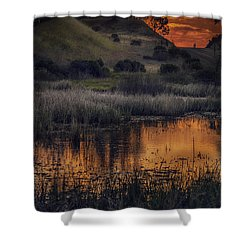 Waterbird Preserve Sunrise Shower Curtain