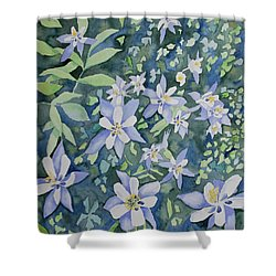Shower Curtain featuring the painting Watercolor - Blue Columbine Wildflowers by Cascade Colors