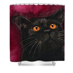 Watercolor Cat 10 Black Cat Shower Curtain