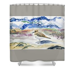 Shower Curtain featuring the painting Watercolor - Double-banded Plover On The Beach by Cascade Colors