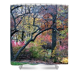 Watercolor Forest Shower Curtain