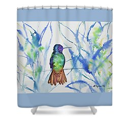 Shower Curtain featuring the painting Watercolor - Golden-tailed Sapphire by Cascade Colors