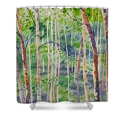 Shower Curtain featuring the painting Watercolor - Magical Aspen Forest After A Spring Rain by Cascade Colors