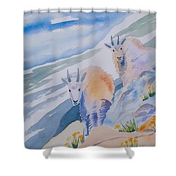 Shower Curtain featuring the painting Watercolor - Mountain Goats On Quandary by Cascade Colors