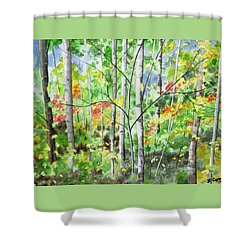 Shower Curtain featuring the painting Watercolor - Northern Forest by Cascade Colors