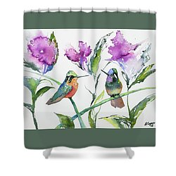 Shower Curtain featuring the painting Watercolor - Purple-throated Mountain Gems And Flowers by Cascade Colors