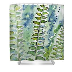 Shower Curtain featuring the painting Watercolor - Rainforest Fern Impressions by Cascade Colors
