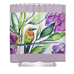 Shower Curtain featuring the painting Watercolor - Rufous Motmot by Cascade Colors