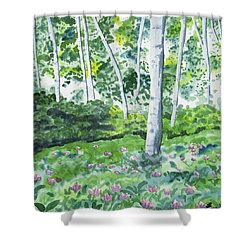 Shower Curtain featuring the painting Watercolor - Spring Forest And Flowers by Cascade Colors