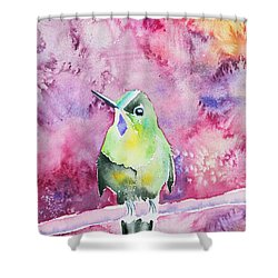 Shower Curtain featuring the painting Watercolor - Violet-tailed Sylph by Cascade Colors