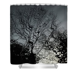Watereflct4 Shower Curtain
