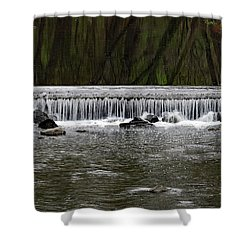 Waterfall 001 Shower Curtain by Dorin Adrian Berbier