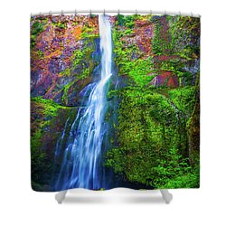 Waterfall 2 Shower Curtain