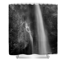 Waterfall 5830 B/w Shower Curtain