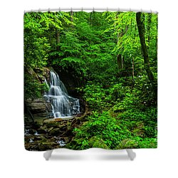Waterfall And Rhododendron In Bloom Shower Curtain