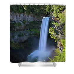 Waterfall At Brandywine Falls Provincial Park Shower Curtain by David Gn