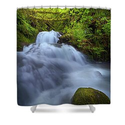 Waterfall At Shepperds Dell Falls Shower Curtain by David Gn