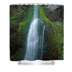 Waterfall In Olympic National Rainforest Shower Curtain by Panoramic Images