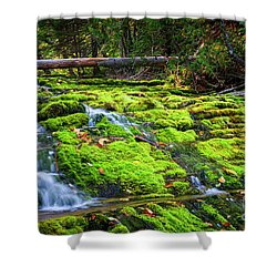 Shower Curtain featuring the photograph Waterfall Over Mossy Rocks by Elena Elisseeva