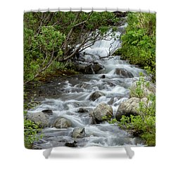 Waterfall Picture - Alaska Shower Curtain