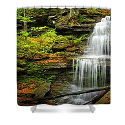 Waterfalls On Little Three Mile Run Shower Curtain