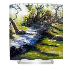 Waterfront And T St In Eureka  Shower Curtain