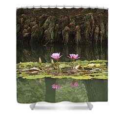 Waterlilies And Cyprus Knees Shower Curtain