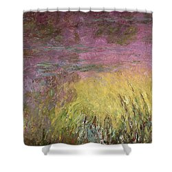 Waterlilies At Sunset Shower Curtain by Claude Monet