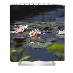 Shower Curtain featuring the photograph Waterlilies by John Rivera