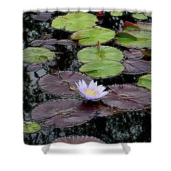 Waterlily - 001 Shower Curtain