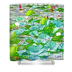 Shower Curtain featuring the painting Waterlily Blossoms On The Protected Forest Lake by Lanjee Chee