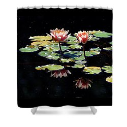 Waterlily Panorama Shower Curtain