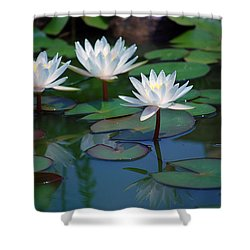 Waterlilys Shower Curtain by Robert Meanor