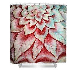 Shower Curtain featuring the photograph Watermelon Carving by Kristin Elmquist
