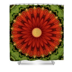 Watermelon Delight Shower Curtain by Sheila Ping