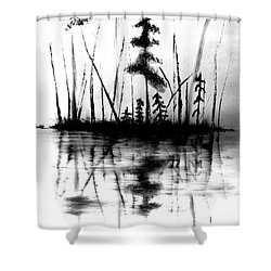 Shower Curtain featuring the painting Waters Edge by Denise Tomasura