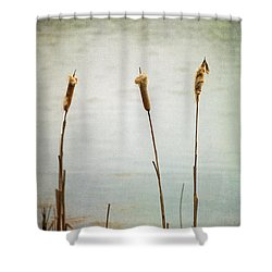 Water's Edge No. 2 Shower Curtain