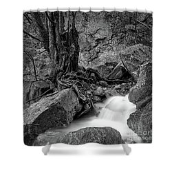 Shower Curtain featuring the photograph Waterside by Tatsuya Atarashi