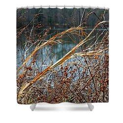 Waterway Shower Curtain