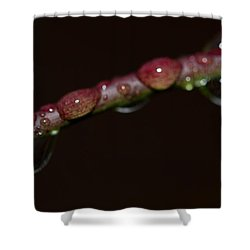 Watery Eyes Shower Curtain