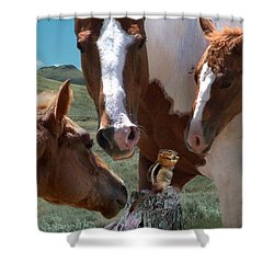 Watizit Shower Curtain