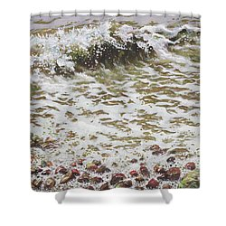 Wave And Colorful Pebbles Shower Curtain by Martin Davey