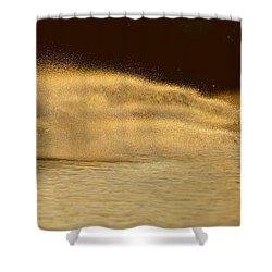 Waverunner Weekend Shower Curtain by Steve Gadomski