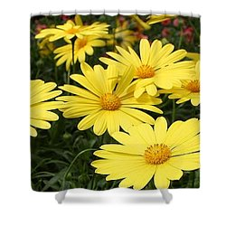 Waves Of Yellow Daisies Shower Curtain