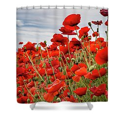 Waving Red Poppies Shower Curtain