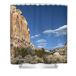 Way In The Distance Shower Curtain by Elvira Butler