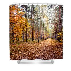 Way Of Light Shower Curtain